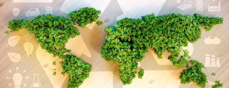 Promover a Sustentabilidade
